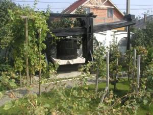 budafok-panzió-kert-3